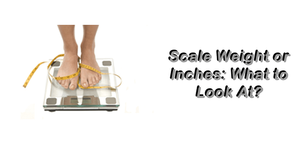 scale-inches