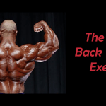 back-training-exercises