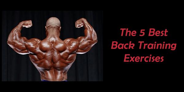 back-training-exercises